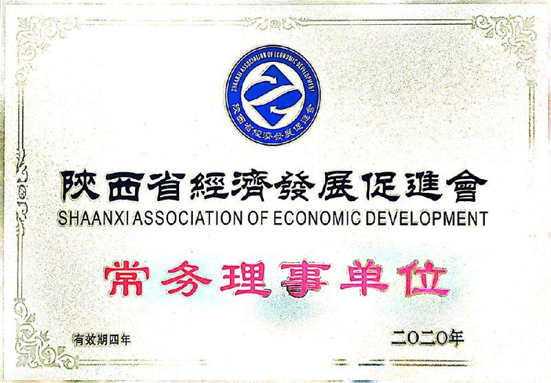 2020陕西省经济发展促进会